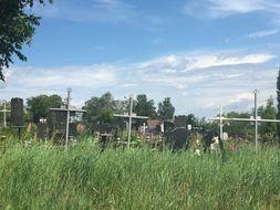 Журавлівське кладовище в м. Фастів poster image