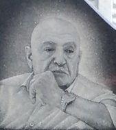 Вемир poster image