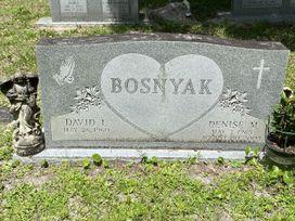 David L. Bosnyak  poster image