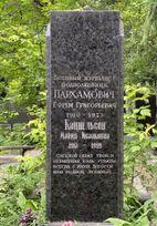 Пархамович  Ефрем Григорьевич poster image