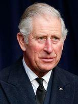 Принц Чарльз  poster image