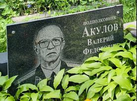 Акулов   Валерий Федорович poster image