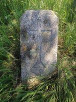 Кладбище в с.Радоловка poster image