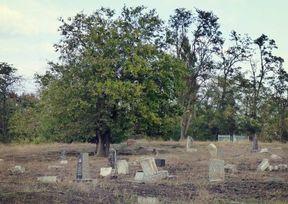 Еврейское кладбище, г.Мелитополь  poster image