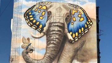 "Мурал ""Слон как бабочка"", г.Запорожье poster image"