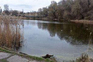Озеро Пінгвін або Куренівське. Водойми Києва. poster image