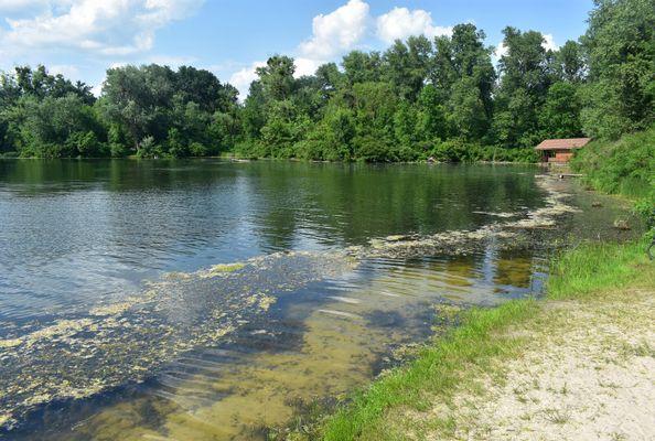 Озеро Берізка. Водойми Києва.
