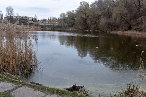 Озеро Пінгвін або Куренівське. Водойми Києва.